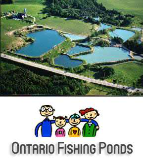 Wilmer Trout Ponds Ontario Fishing