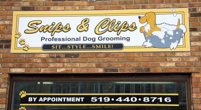 Snips clips dog grooming ruralbuzz snips and clips clinton dog grooming solutioingenieria Image collections