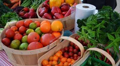 FairFields CSA Organic Produce Neustadt