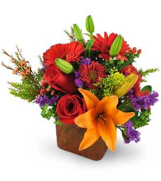 Always Flowers Collingwood