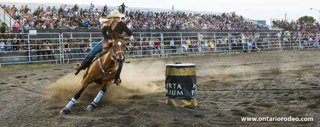 rodeo ontario tours