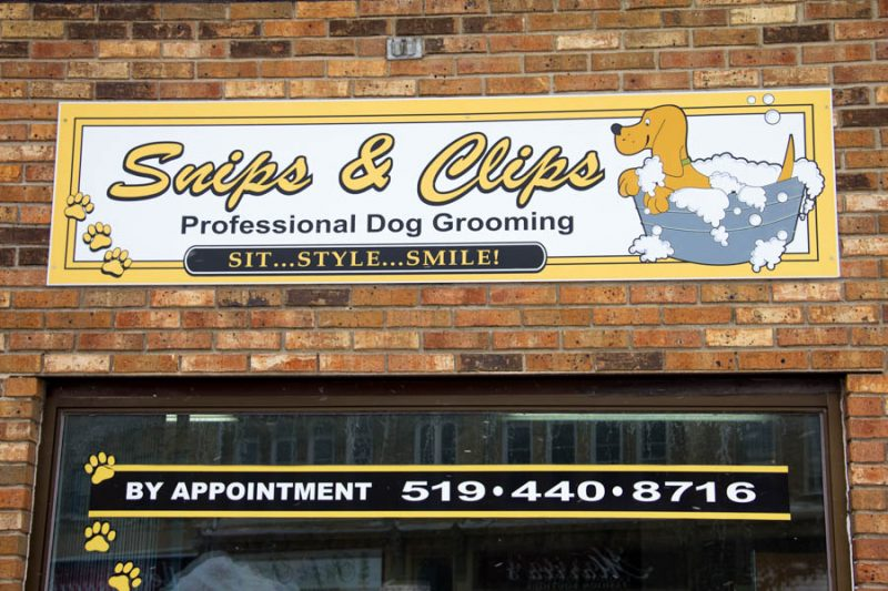 Snips clips dog grooming ruralbuzz snips and clips cliton solutioingenieria Images