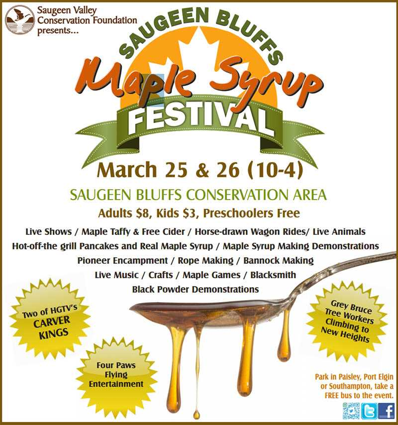 Maple syrup Saugeen bluffs