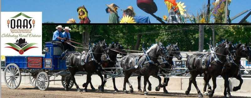 Agriculture-fairs Ontario
