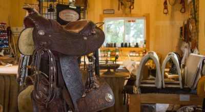 Saddle shack Mount Forest Ontario