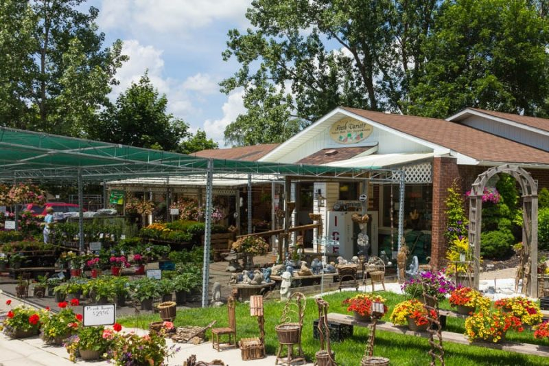 Shelburne Fresh Variety, produce and garden centre